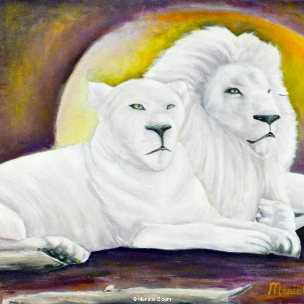 Witte Leeuwen